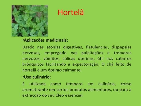 plantas-medicinais-11-728